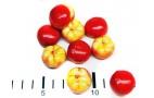 Бутафория (помидор черри, красный мал.) - 1шт.
