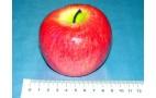 Бутафория - муляж 80019 (яблоко розовое) - качество